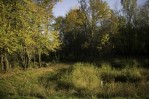Lot 24 Bluestem Tr, Deforest, WI by First Weber Real Estate $179,900