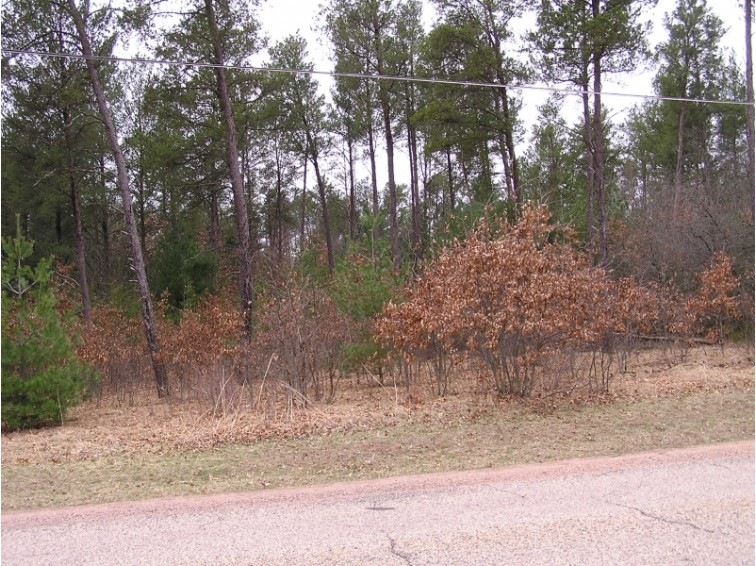 Lot 5 S 20th Street, Wisconsin Rapids, WI by First Weber Real Estate $9,900