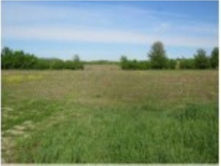 Lot 2 HWY F, Berlin, WI by First Weber Real Estate $64,980