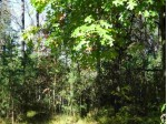L175 Timber Tr, New Lisbon, WI by Castle Rock Realty Llc $9,800