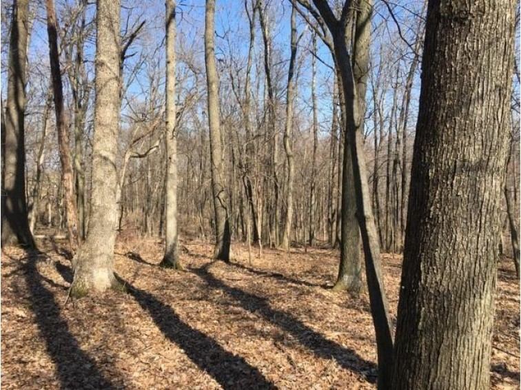 160 AC County Road NN, Avoca, WI by First Weber Real Estate $675,000