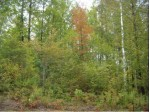 TURNBERRY WAY Lot 10, Lakewood, WI by Coldwell Banker Bartels Real Estate, Inc $30,000