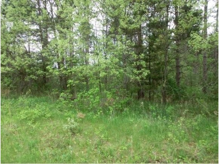 HWY F Lot 4, Wautoma, WI by First Choice Realty, Inc. $75,000