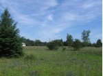 CALI WAY Lot 3, Waupaca, WI by Century 21 Ace Realty $14,900