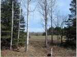 NIKODEM Lane, Abrams, WI by Zimms and Associates Realty $100,000