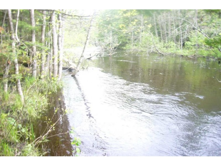 LOON RAPIDS Road, Mountain, WI by Coldwell Banker Bartels Real Estate, Inc $79,900