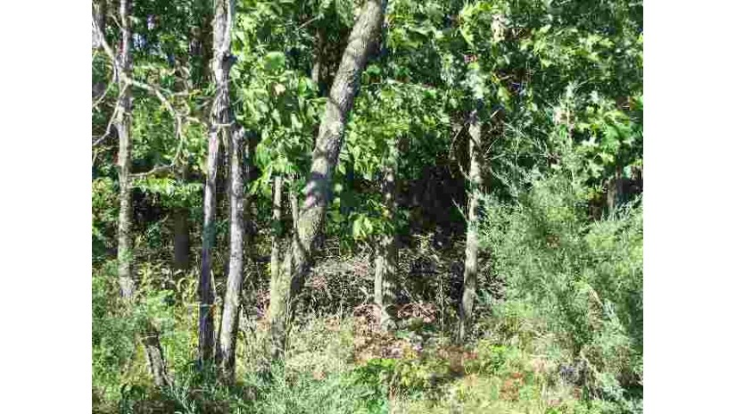 Lot 3 Csm 217 Mecan, WI 53949 by Coldwell Banker Cotter Realty $25,000