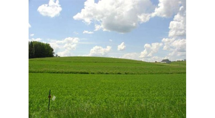 L4 County Road V (redstone Ranch) Winfield, WI 53941 by Re/Max Preferred $44,900