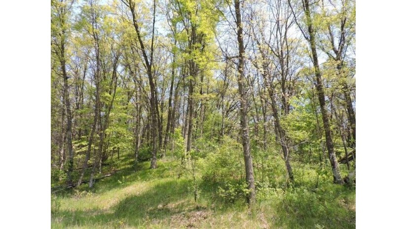4769 Turkey Trail Amherst, WI 54406 by First Weber $32,500