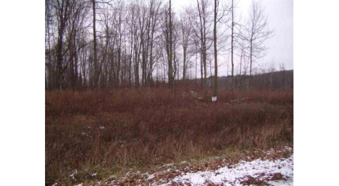 Thorn Apple Drive Wittenberg, WI 54499 by Smart Move Realty $23,900