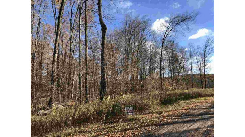 Thornapple Drive Wittenberg, WI 54499 by Smart Move Realty $27,900