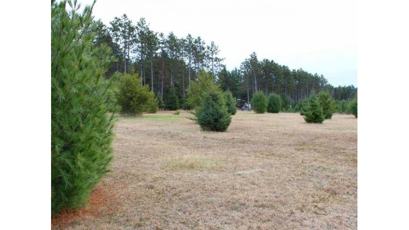 Lot 1 Trinity Ct Woodruff, WI 54568 by Re/Max Property Pros-Minocqua $29,500
