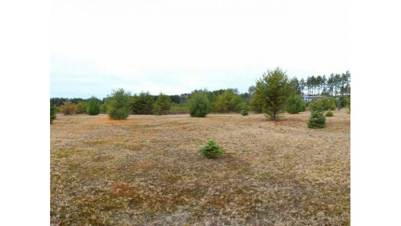 Lot 2 Trinity Ct Woodruff, WI 54568 by Re/Max Property Pros-Minocqua $29,500
