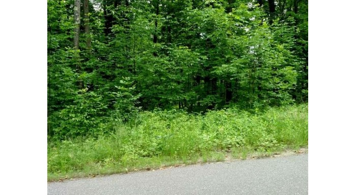 On Squaw Lake Rd W Lot 3 Minocqua, WI 54548 by Coldwell Banker Mulleady - Mnq $130,000