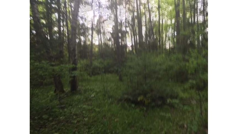 On Misty River Ln Crescent, WI 54501 by Lakeplace.com - Vacationland Properties $49,000