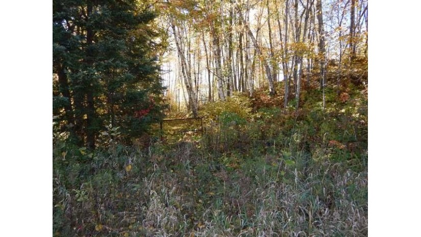 On Foreman Rd 2.68 Acres Neva, WI 54424 by Wolf River Realty $49,900