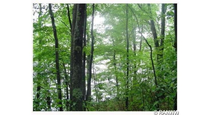 Lot 1 Hwy H Iron River, WI 54847 by Boncler Realty Inc $89,900