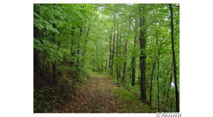 Lot 2 Hwy H Iron River, WI 54847 by Boncler Realty Inc $109,900