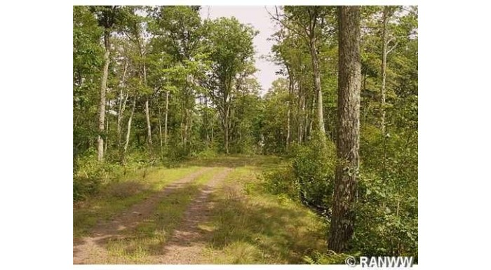 Lot 9 Tanglewood Pkwy Hayward, WI 54843 by C21 Woods To Water $72,165