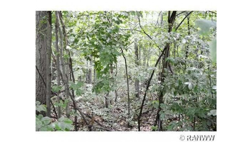 0 20 5/8 Rice Lake, WI 54868 by Team Realty $22,900
