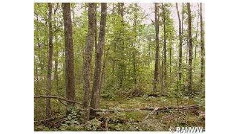 Lot 15 Tanglewood Hayward, WI 54843 by C21 Woods To Water $49,000