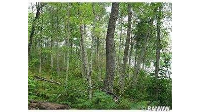 Lot 16 Tanglewood Hayward, WI 54843 by C21 Woods To Water $49,000