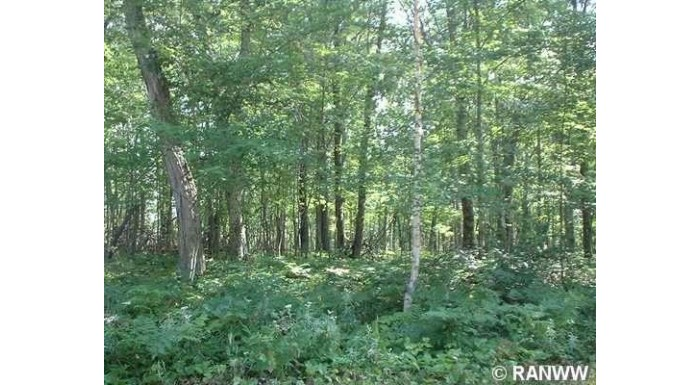 Lot 29 Bridle Pathway Webster, WI 54893 by Voyager Village Realty Llc $3,399