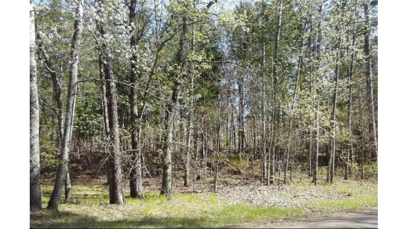 Lot 20 Wintergreen Danbury, WI 54830 by Voyager Village Realty Llc $4,300