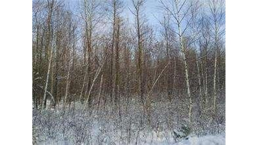 Lot 1 Hawk Haven Hayward, WI 54843 by Edina Realty, Inc. - Hayward $32,900