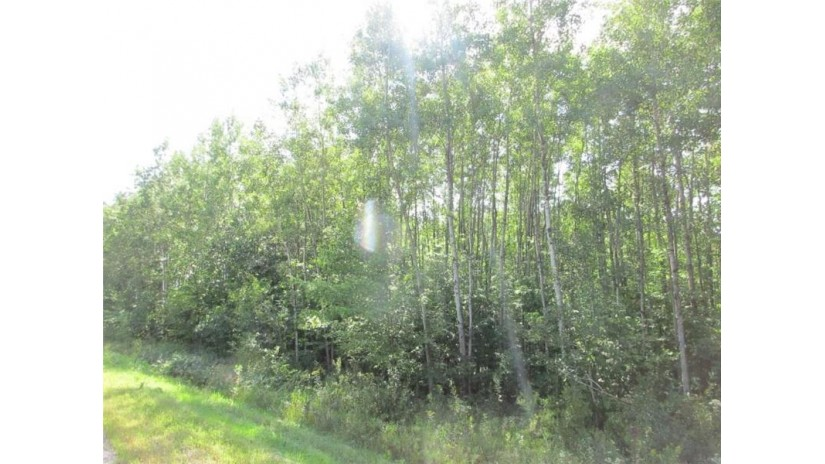 0 County Winter, WI 54896 by Northwest Wisconsin Realty $60,900