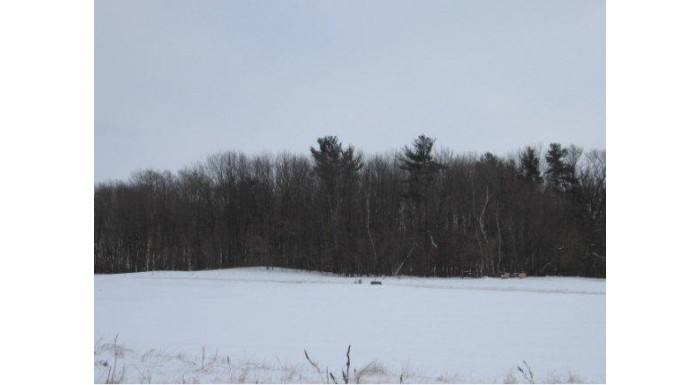 E9560 SCENIC VIEW CT Lot 46 Caledonia, WI 54940 by Coldwell Banker The Real Estate Group $34,900