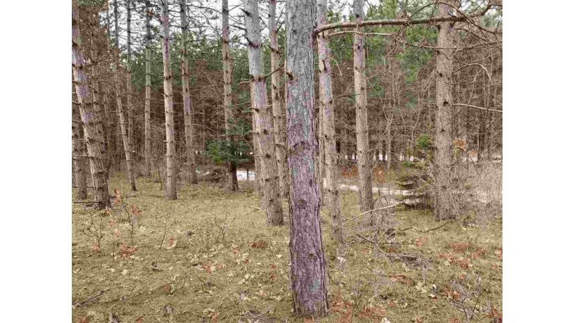 11076 EDMINSTER RD Lanark, WI 54981 by RE/MAX Lyons Real Estate $53,900