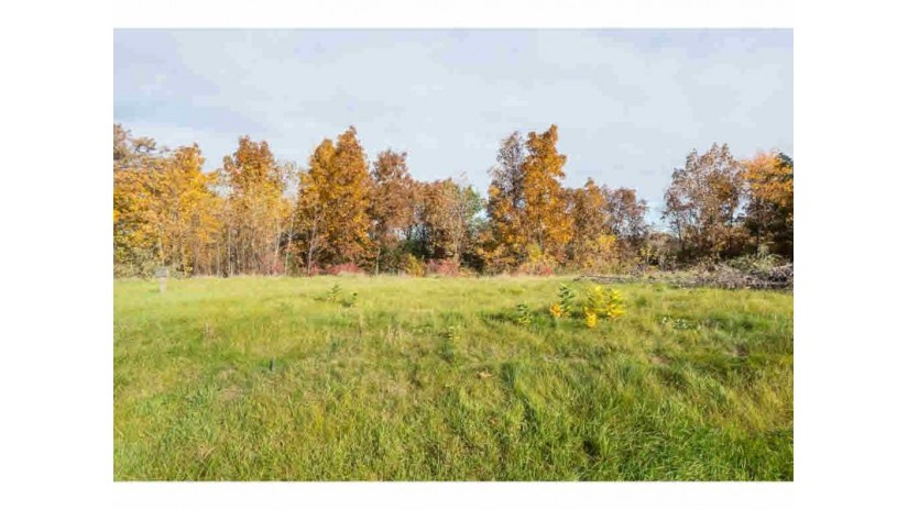 4207 STONEGATE DR Lot 123 Algoma, WI 54904 by First Weber Group $69,900