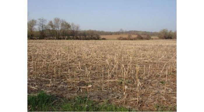 HWY 76 Lot 3 & 4 Ellington, WI 54944 by Century 21 Affiliated First Realty $94,800