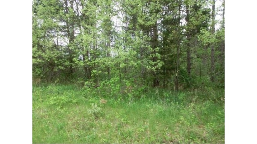 HWY F Lot 4 Marion, WI 54982 by First Choice Realty, Inc. $75,000