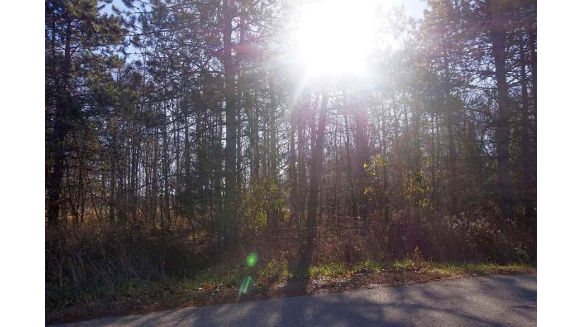 OAKWOOD PASS Lot 26 Mukwa, WI 54961-8857 by Century 21 Ace Realty $37,900