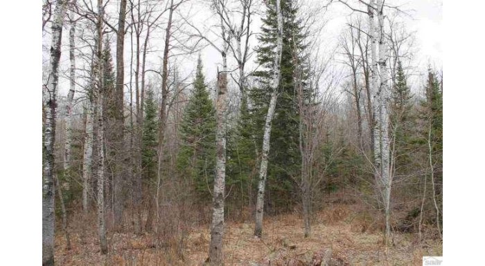 0000 Beaugard Rd Ashland, WI 54806 by Coldwell Banker East West - Ashland $40,000