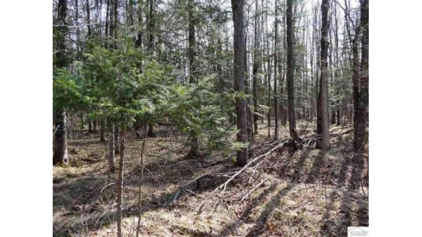 0 Silver Birch Dr Cable, WI 54821 by Mckinney Realty, Llc $5,000