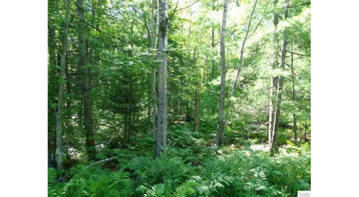 Lot 2 Mondamin Tr Lapointe, WI 54850 by Island Shores Realty $15,000