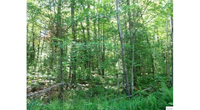 Lot 3 Mondamin Tr Lapointe, WI 54850 by Island Shores Realty $15,000