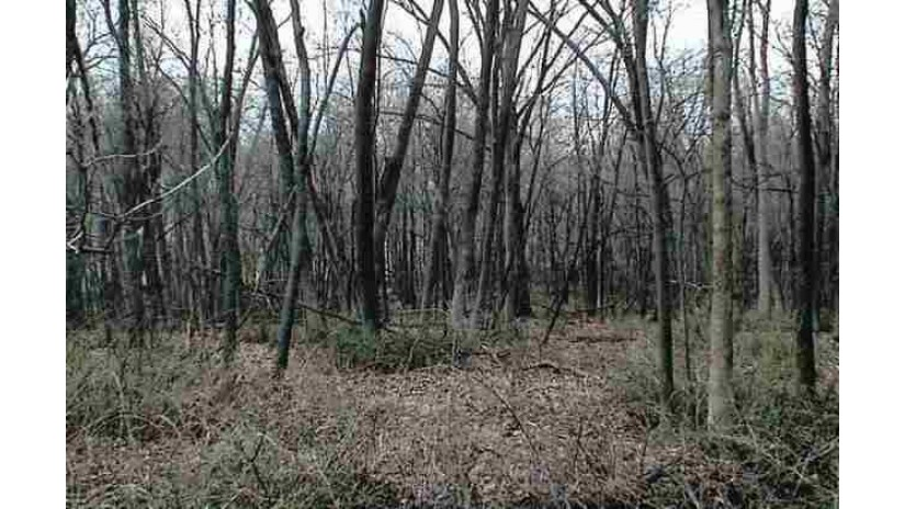 Lot 11 County Road D Fountain Prairie, WI 53932 by First Weber Inc $74,900