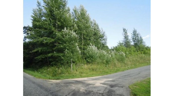 L8 Holden Rd Tomah, WI 54660 by Re/Max Hometown Real Estate $14,000