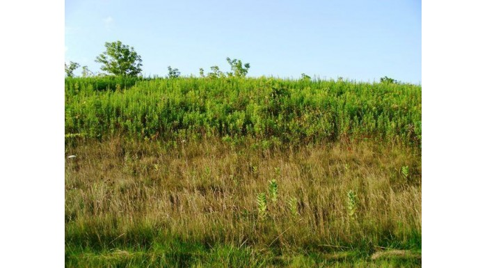 Lot 1 Honeycut Ave Tomah, WI 54660 by Re/Max Hometown Real Estate $15,000
