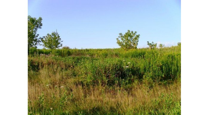 Lot 2 Honeycut Ave Tomah, WI 54660 by Re/Max Hometown Real Estate $17,000