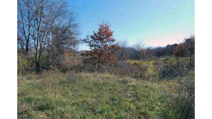 Lot 322 Sioux Tr (bobsled Ln) Woodland, WI 53941 by Re/Max Preferred $7,900