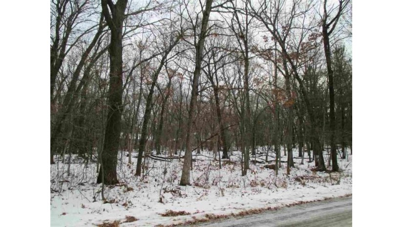 L87 Christmas Mountain Dr Dellona, WI 53965 by Century 21 Affiliated $20,000