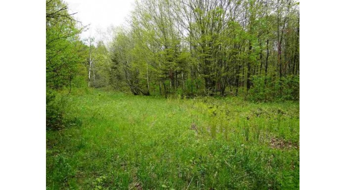 N5661 Hwy 111 Harmony, WI 54515 by Pifer'S Auction & Realty $120,000