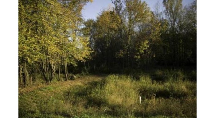 Lot 24 Bluestem Tr Deforest, WI 53532 by First Weber Inc $179,900