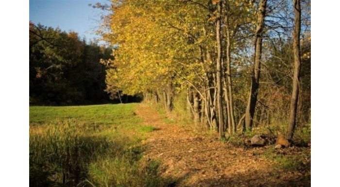 Lot 25 Indigo Dr Deforest, WI 53532 by First Weber Inc $179,900