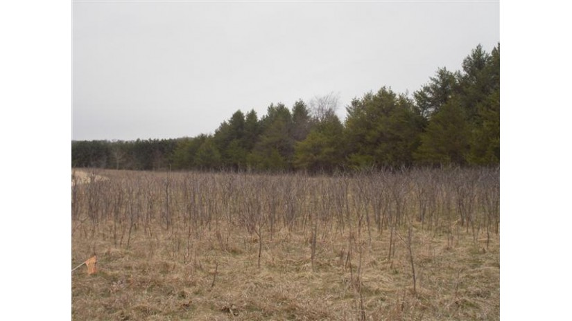 L9 County Road Hh Lyndon, WI 53944 by Castle Rock Realty Llc $23,900